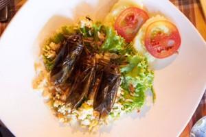 Kakerlaken im Restaurant essen